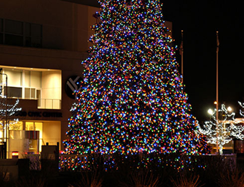 Large christmas tree decorated with lights